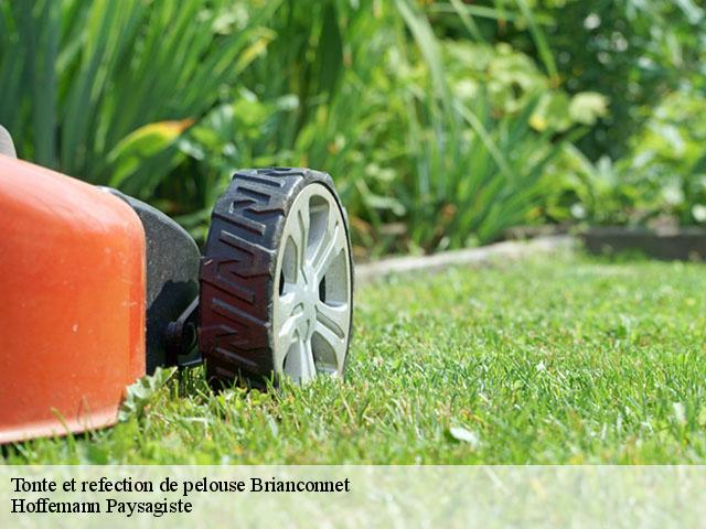 Tonte et refection de pelouse  brianconnet-06850 Hoffemann Paysagiste