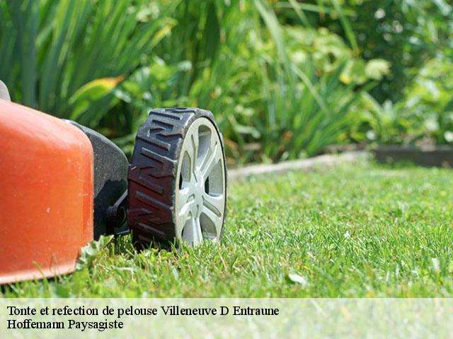 Tonte et refection de pelouse  villeneuve-d-entraune-06470 Hoffemann Paysagiste